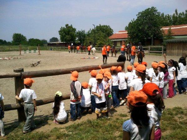 Okullara Binicilik resimleri